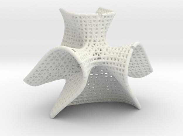 Clebsch math art in White Natural Versatile Plastic