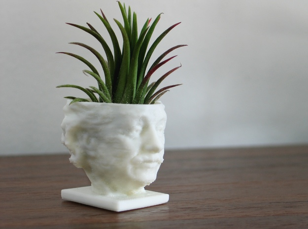 Einstein Air Plant Planter in White Natural Versatile Plastic