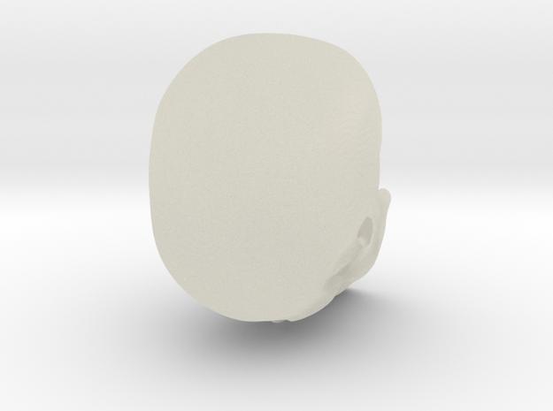 Skull 2 3d printed