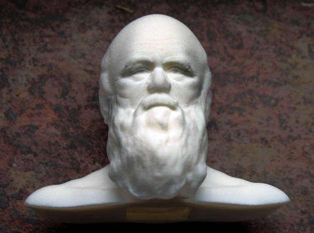 Charles Darwin Bust 3d printed A small bust of Darwin
