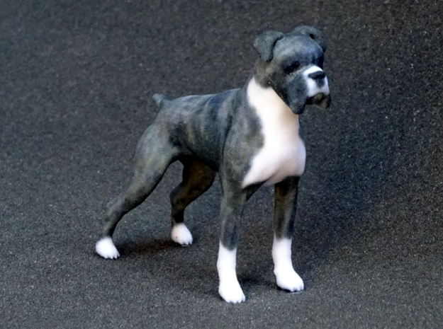 Brindle Boxer in Full Color Sandstone