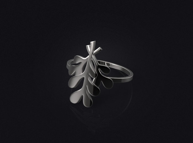 3D visualization of the ring in silver.