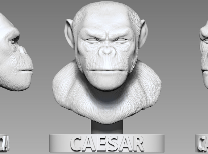 Original render of the ZBrush sculpture in the form of a bust.