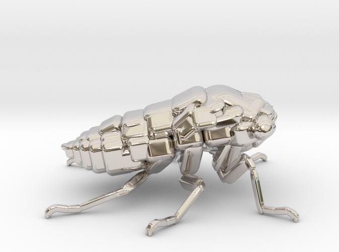 Platinum cicada for the riches!