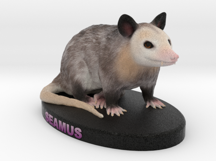Custom Possum Figurine - Seamus 3d printed