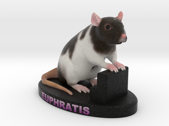 Custom Rat Figurine - Euphratis 3d printed