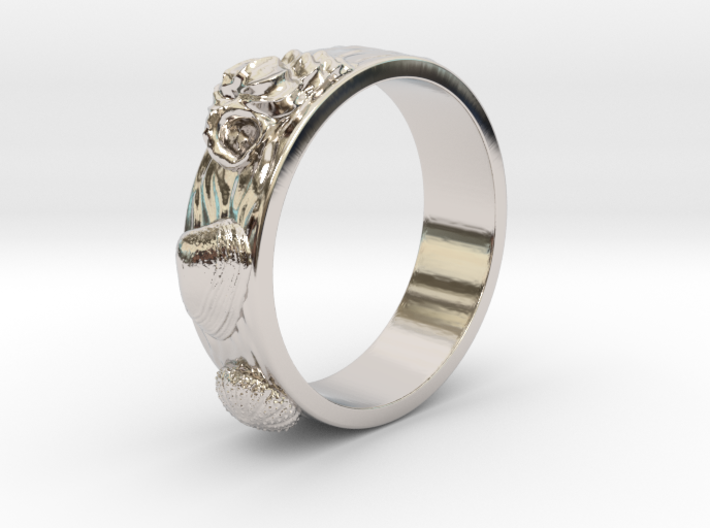 Sea Shell Ring 1 - US-Size 4 (14.86 mm) 3d printed