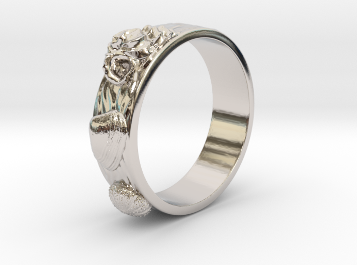 Sea Shell Ring 1 - US-Size 5 1/2 (16.10mm) 3d printed