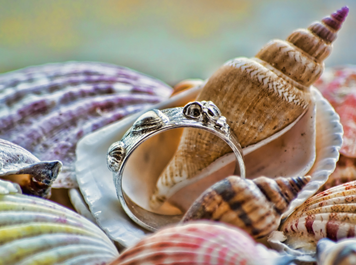 Sea Shell Ring 1 - US-Size 3 1/2 (14.45 mm) 3d printed Seashell Ring in polished silver (shown: size 10)