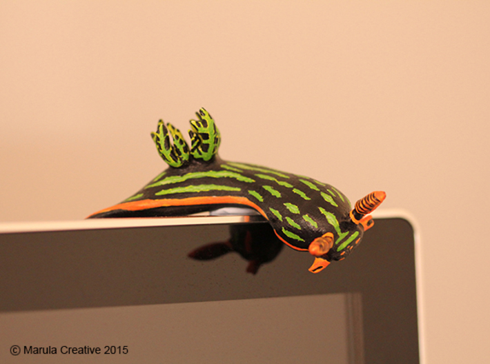 Yana the Nudibranch 3d printed Hand Painted White Strong & Flexible Polished - on computer monitor!
