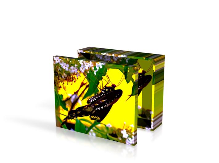 Butterfly In Havana Box 4in 3d printed