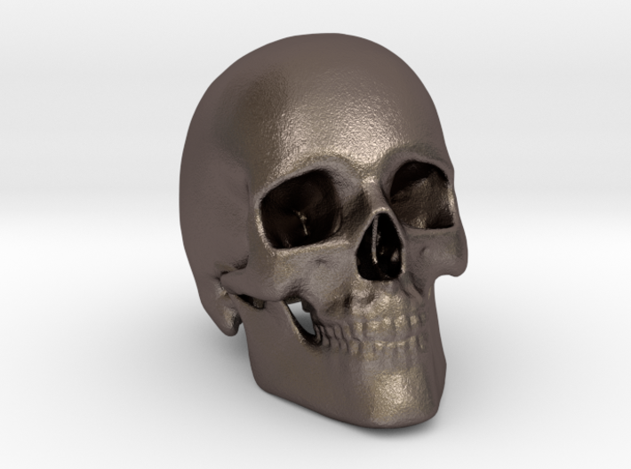 Human Skull 3d printed