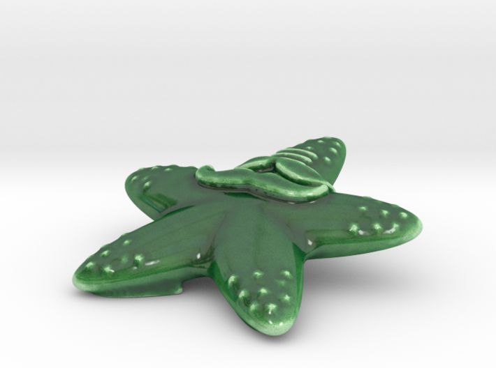 Indian hipster starfish Porcelain 3d printed