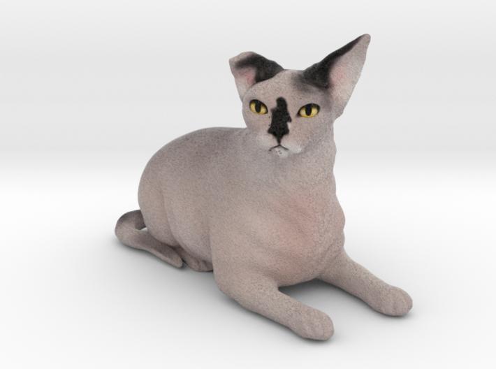 Custom Cat Figurine - Phaedra 3d printed