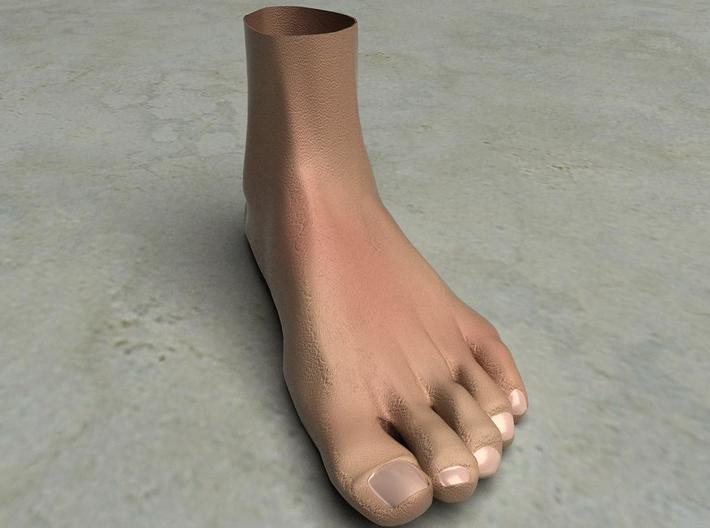 "Life Size Foot - 8.7""- Hollow 3d printed This is a rendering of the foot, not the actual product!"