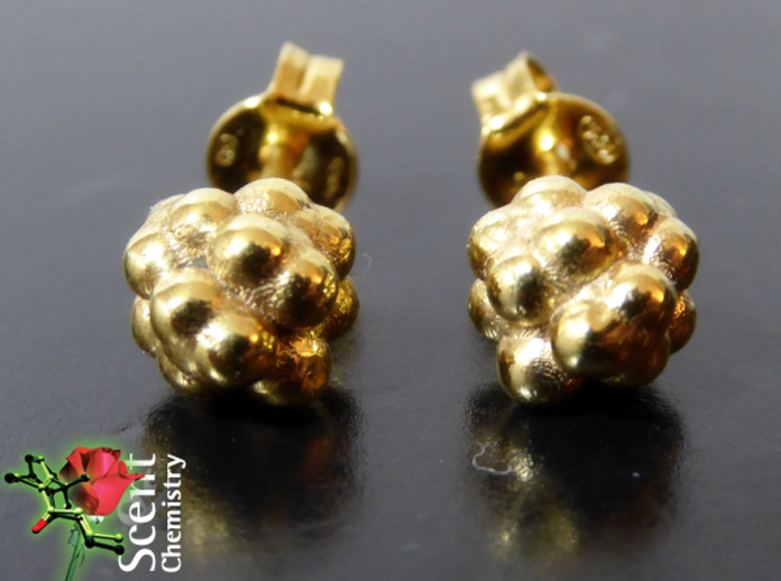 Camphor Earring Studs 3d printed Front view of the 18k gold-plated camphor ear studs with fitting Thomas Sabo butterfly clips Z881-2.