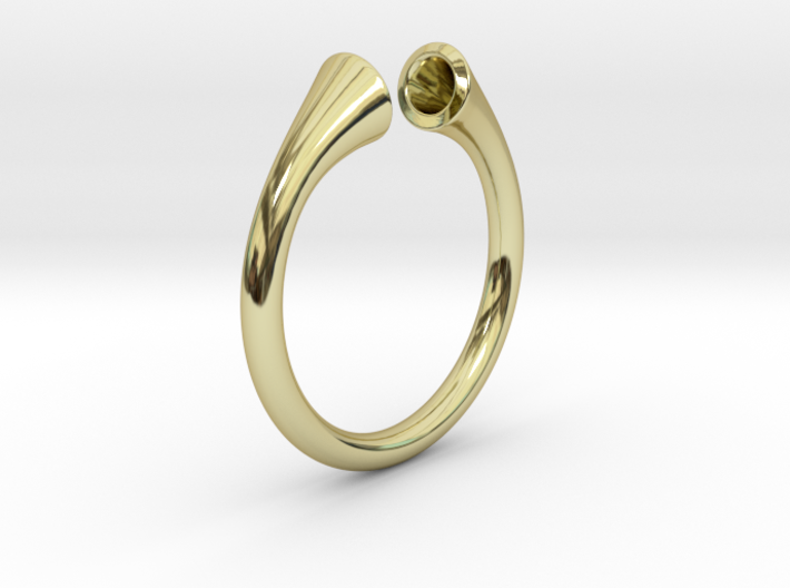 Gramaphonic Ring, US size 8,5 d= 18mm. Place M 3d printed