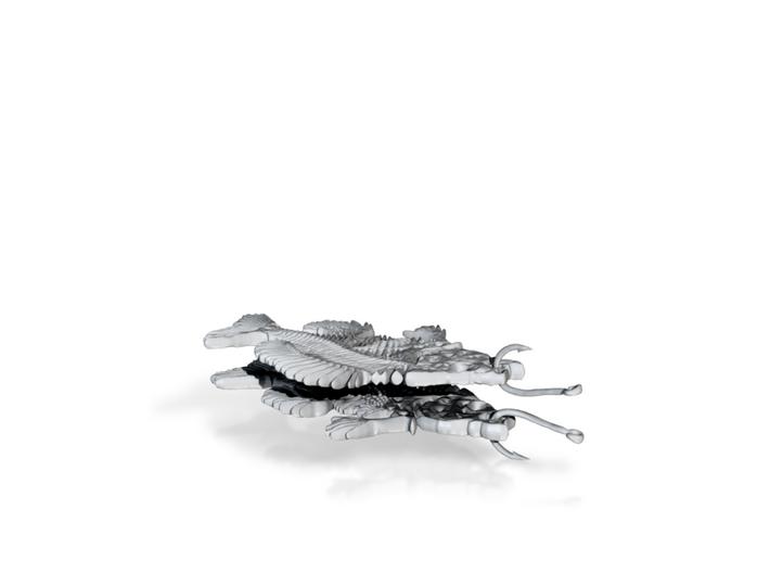 Bluegill fish skeleton earring pair 3d printed