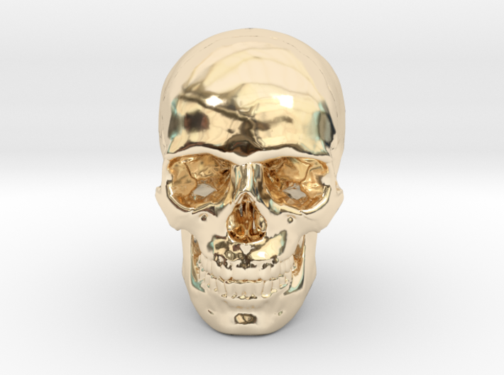 33mm 1.3in Human Skull (23mm/.9in wide) 3d printed