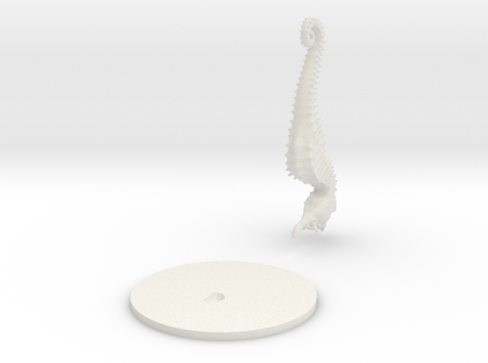 Giant Seahorse 3d printed