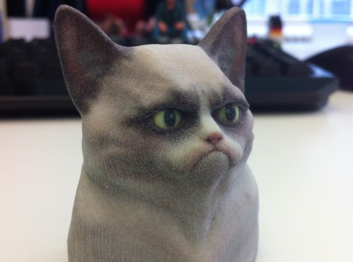 Grumpy Cat Bust 3d printed Picture from mboylevt