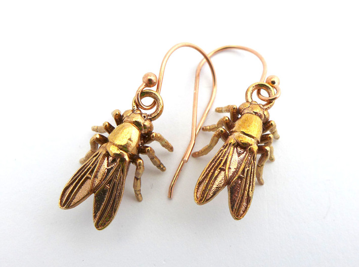Drosophila Fruit Fly Earrings  3d printed Drosophila earrings in raw bronze