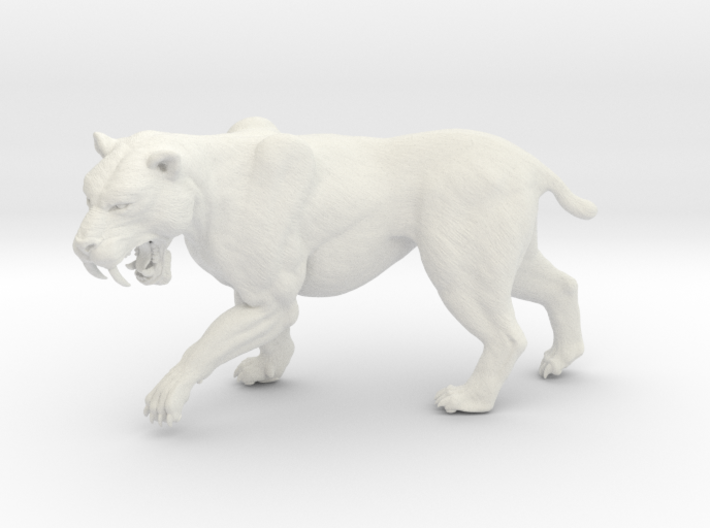 Smilodon (Small/Mediumr size) 3d printed