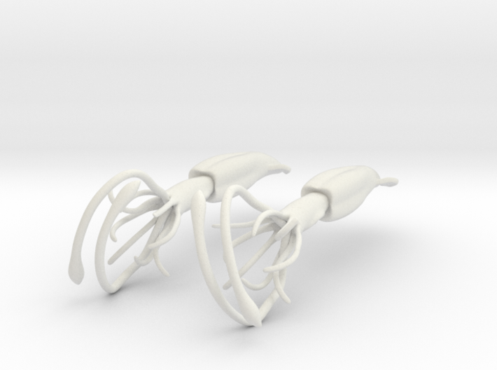 Squid Earrings08 3d printed