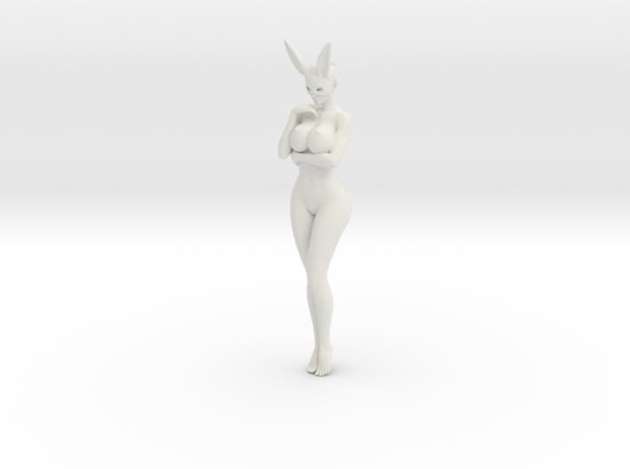 Bunny lady 005 1/10 3d printed
