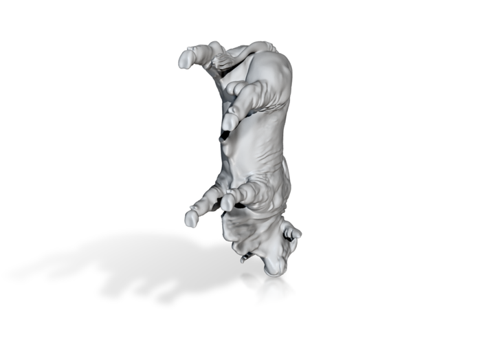 1/64 Brahma Bull 3d printed