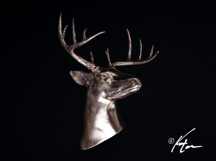 White Tail Deer Mount 3d printed Bronze Casting of the White Tail Mount