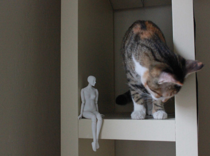 Ball Jointed Doll (One Piece Head) 3d printed Kitty for scale