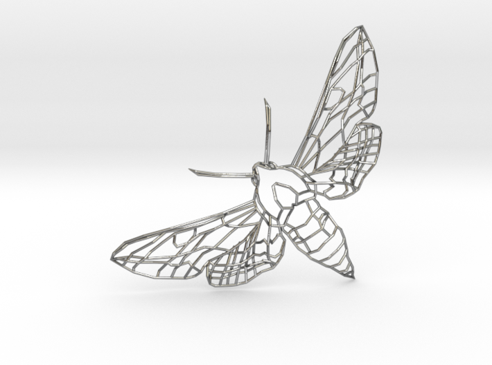 The Spurge Hawk-moth  3d printed