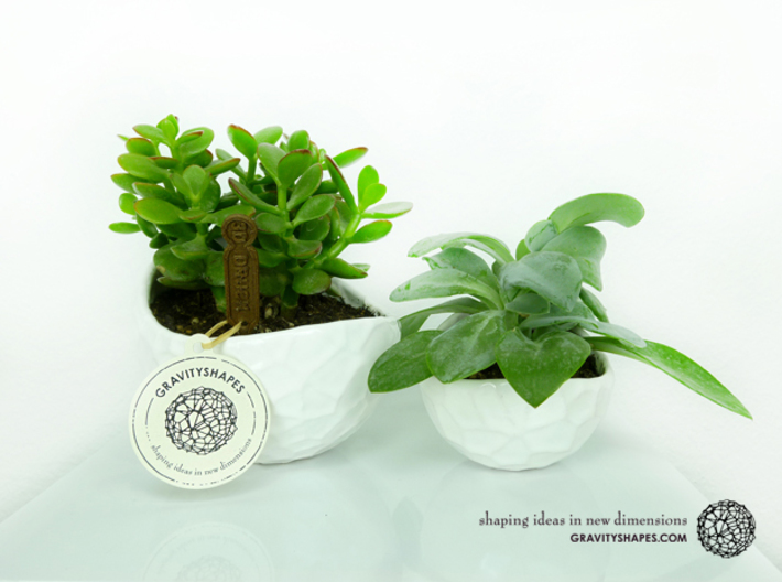 Porcelain plant pot #12 (size small, round) 3d printed Porcelain plant pots #4 XL and #12 small round (Gloss White)