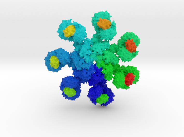 Human Apoptosome 3d printed