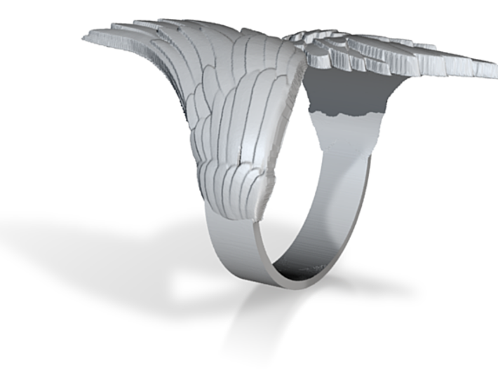 Ring-Wings 3d printed
