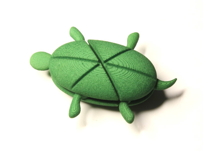 Hearturtle 3d printed Hearturtle in the shape of turtle
