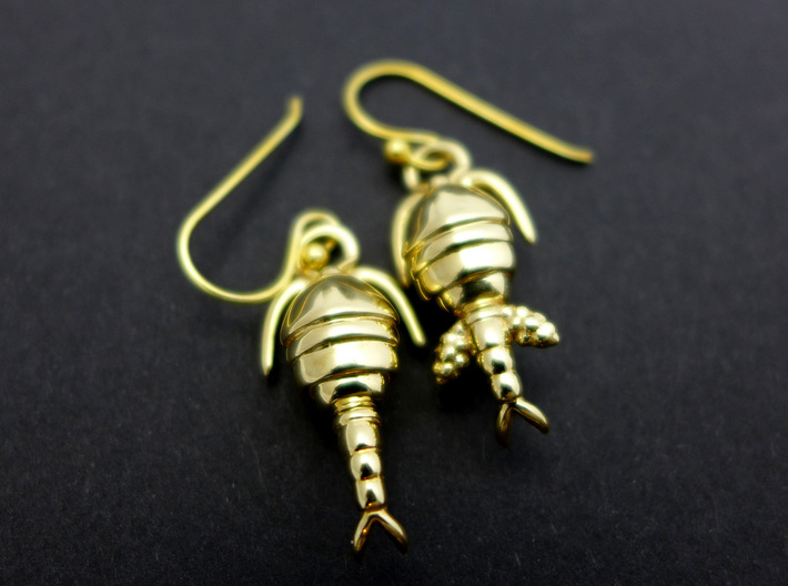 Copepod Earrings - Science Jewelry 3d printed Copepod earrings in polished brass