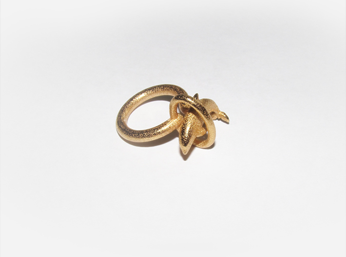 Dolplin Ring (US Size8) 3d printed Gold Plated Glossy