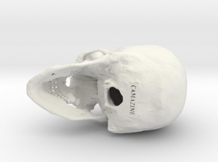 Human skull - 65mm 3d printed