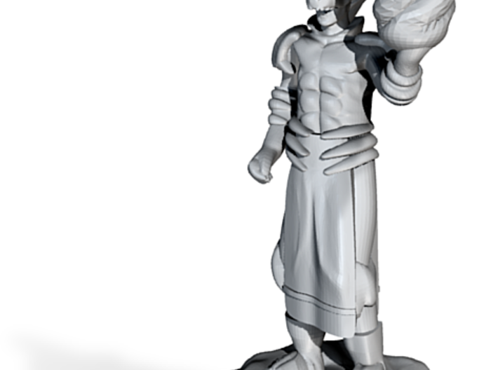 Water Wizard with Dragon Helmet 3d printed
