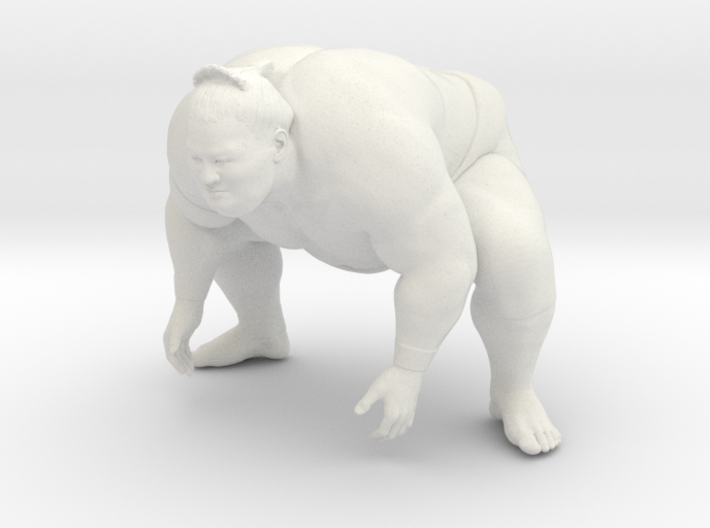 Japanese Sumo 006 3d printed