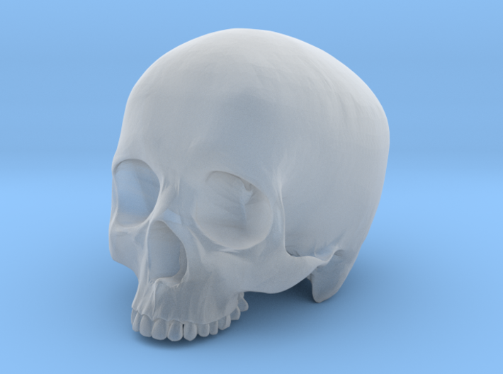 Skull Top scale 1/6 3d printed
