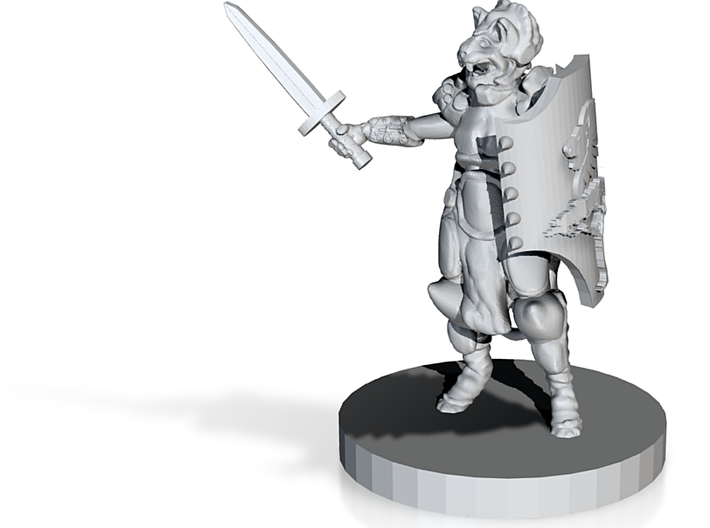 Cat Person Paladin (28mm Scale) 3d printed