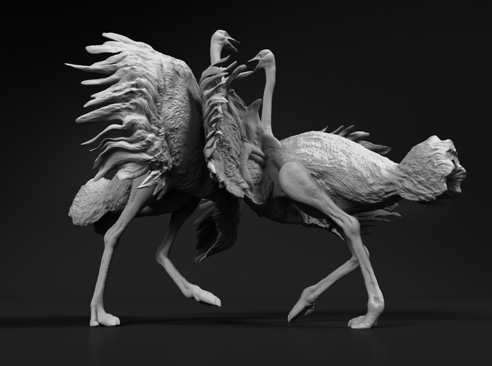 Ostrich 1:87 Fighting Pair 3d printed
