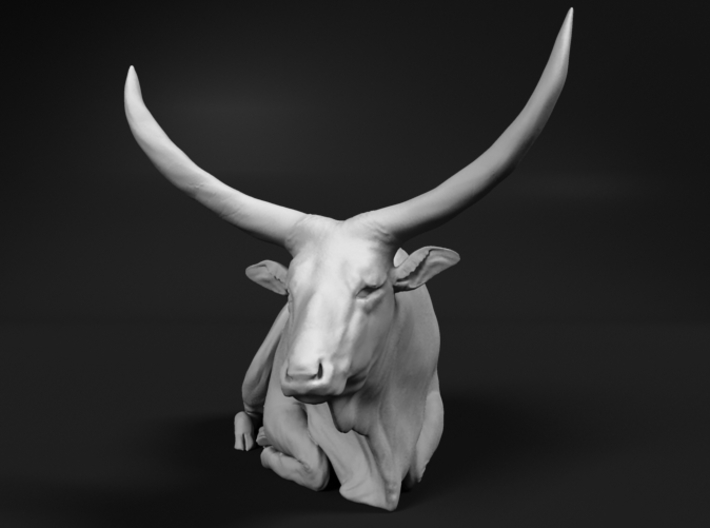 Ankole-Watusi 1:12 Lying Female 1 3d printed