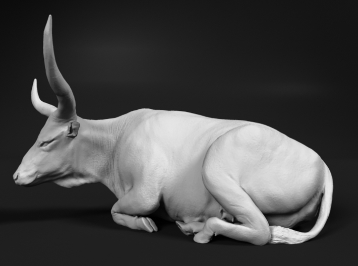 Ankole-Watusi 1:9 Lying Female 2 3d printed