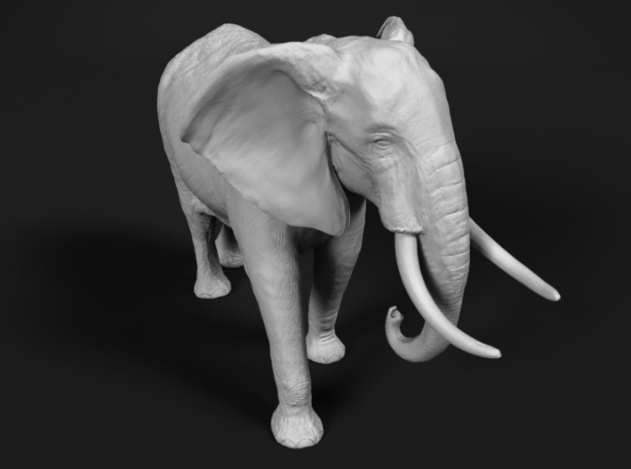 African Bush Elephant 1:20 Walking Male 3d printed