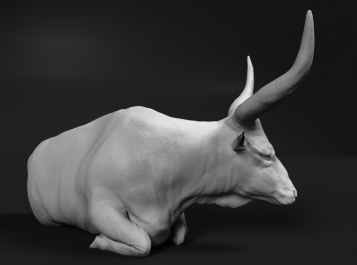 Ankole-Watusi 1:25 Lying Female 2 3d printed