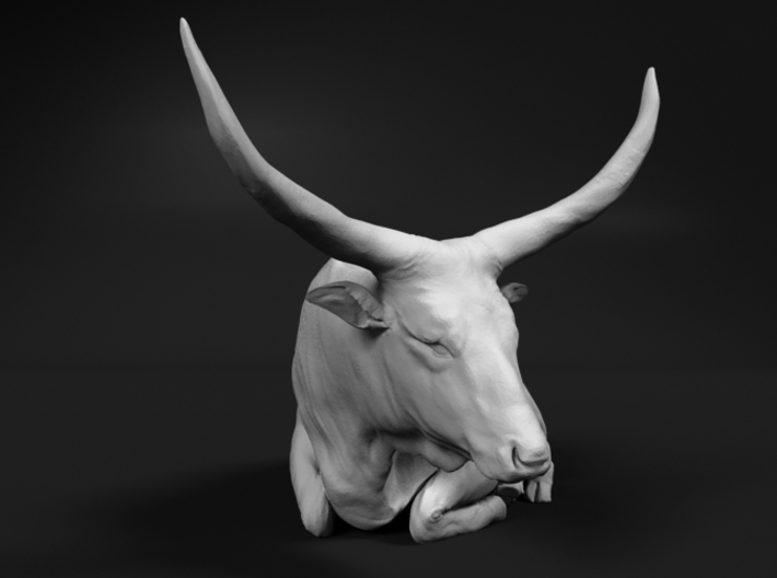 Ankole-Watusi 1:87 Lying Female 2 3d printed